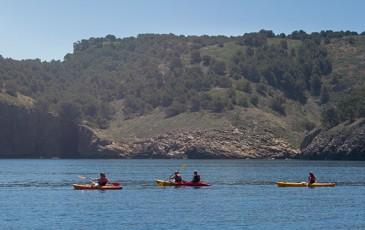 kayac+calas