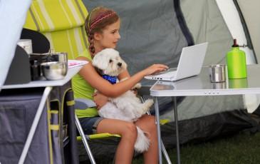 normativa interna para perros